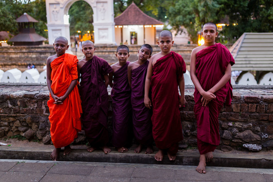 Groups of novice monks at the The tooth sanctuary, Kandy, Sri Lanka Boys Buddha Buddhism Buddhist Temple Group Group Of People Kandy Monk  Monks Novice Novice Monk Outdoors People Relict Religion Robe Sanctuary  Sri Lanka Sri Lankan Temple Tourism Traditional Clothing Young