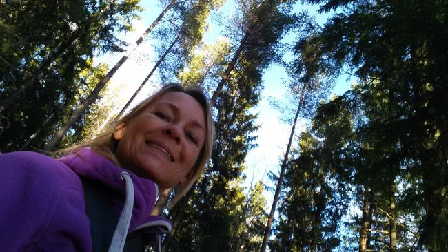 lost in Østmarka. For The Love Of Trees ~ Trees Hiking