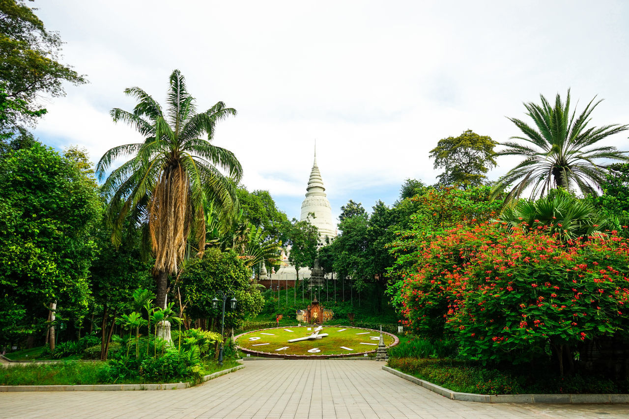Architecture Attraction Cambodia Colorful Day Freshness No People Outdoors Palm Tree Park Phnom Phnom Penh Sky Tourist Travel Destinations Tree