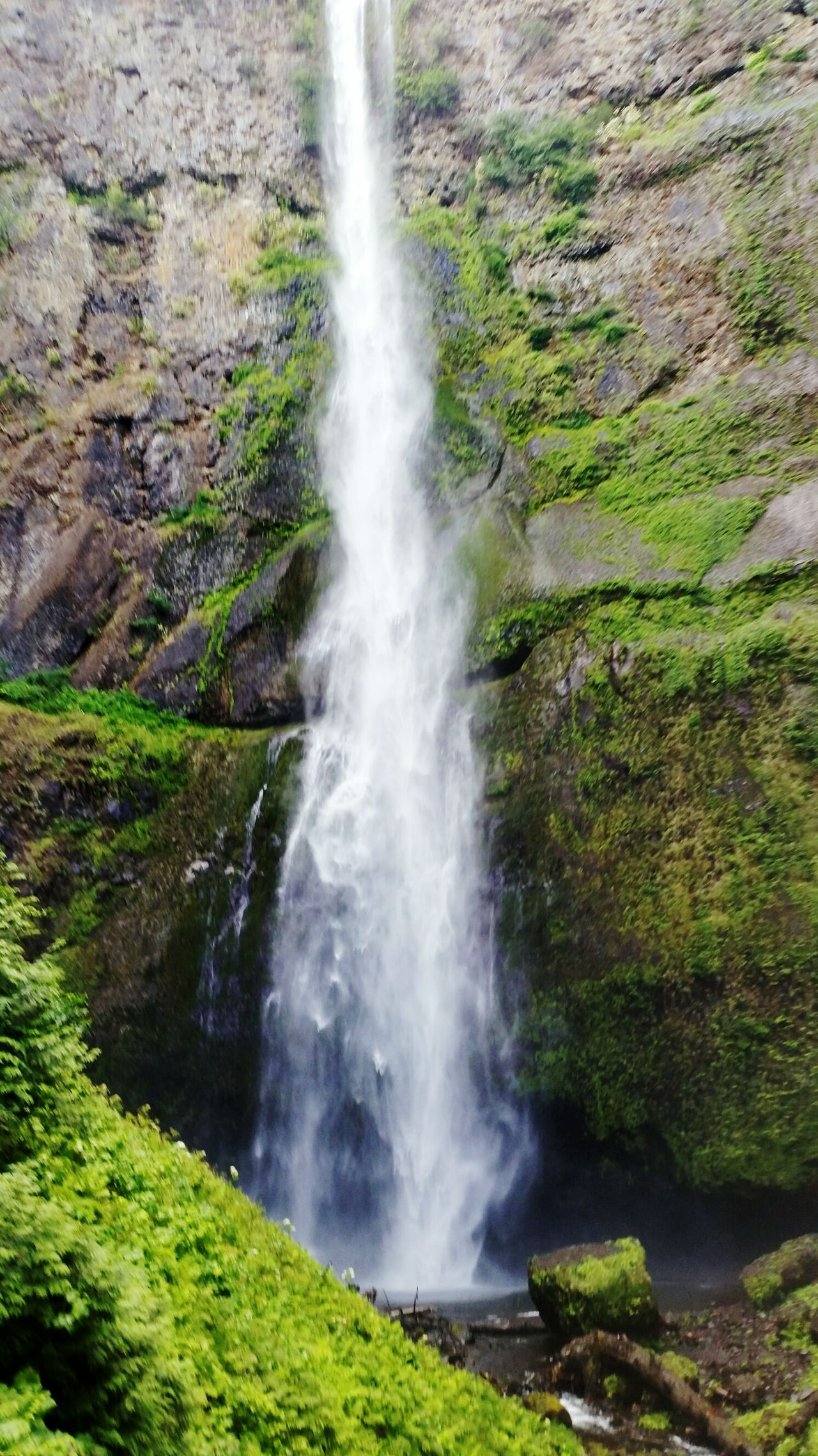 My Year My View Oregon Multnomah Falls  Tranquility Purity Tranquil Scene Long Exposure Rock - Object Outdoors Exercise In Style Travel Destinations Beauty In Nature Motion Waterfall Flowing Water Rehab For The Foot Power In Nature Freshness Beauty In Nature Scenics No People Nature Water Day