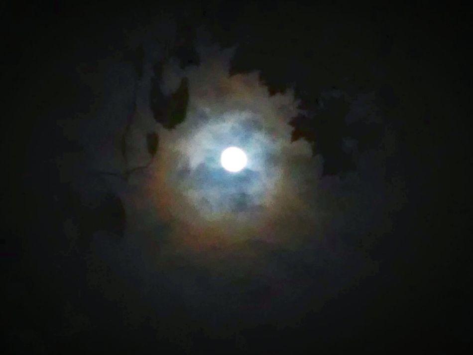 Moonlight New Moon Moon_collection Moonshine Moonporn Moonbeauty In The Still Of The Night Hunters Moon Wolf Moon