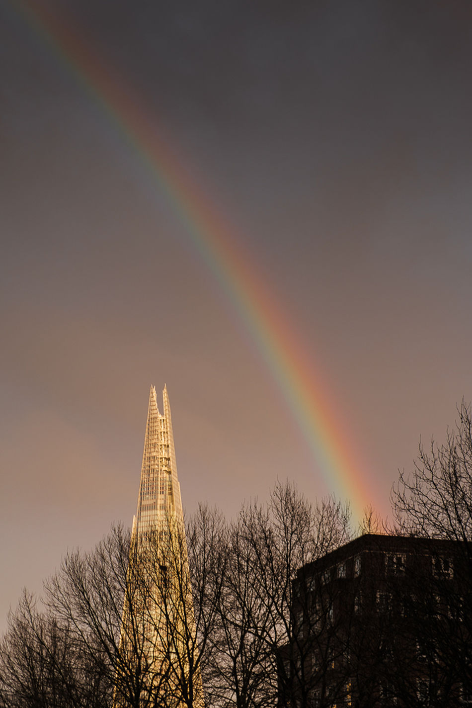 Rainbow over the Shard Beauty In Nature Nature Outdoors Rainbow Shard Sky Street Tranquility Tree Treetop
