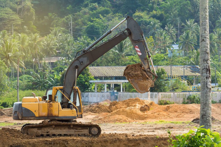 Construction site area. Agricultural Machinery Coconut Palm Tree Construction Machinery Construction Site Day Digging Earth Mover Excavator Machinery No People Outdoors Tree Working