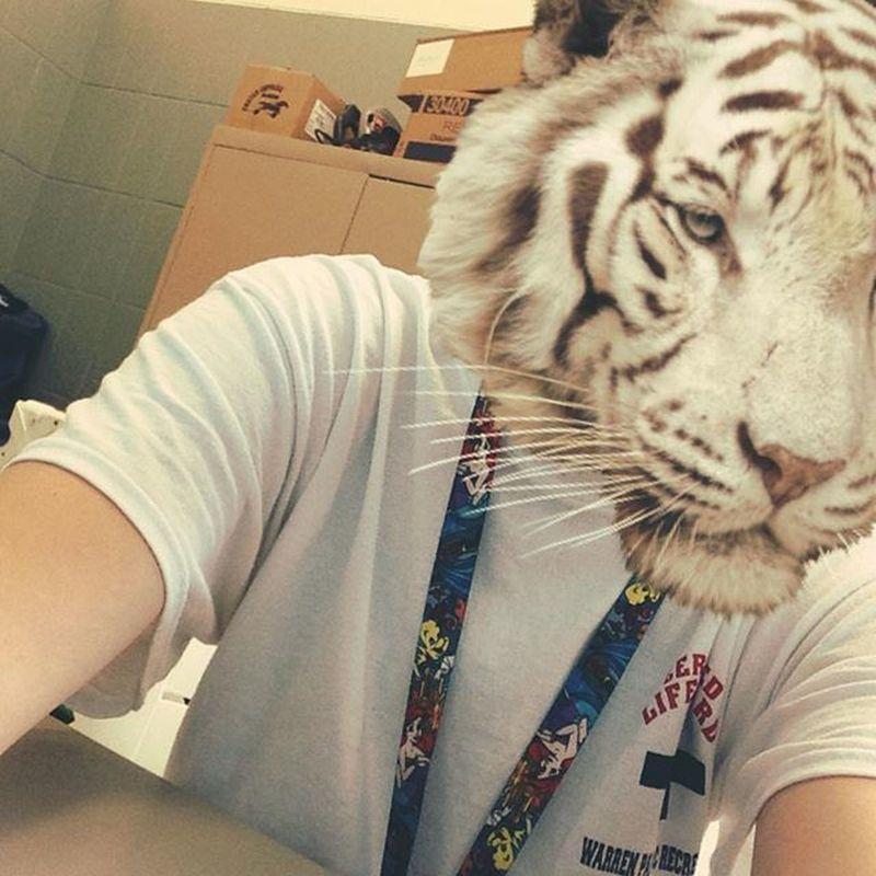 ~mew~ Cat Tiger Cute Me Selfie Snowtiger Likeforlike Followforfollow Cutiepie Cutie Me Animal Edit Awe Mow Meow Mew Kitty Rawr Roar Rar Awww