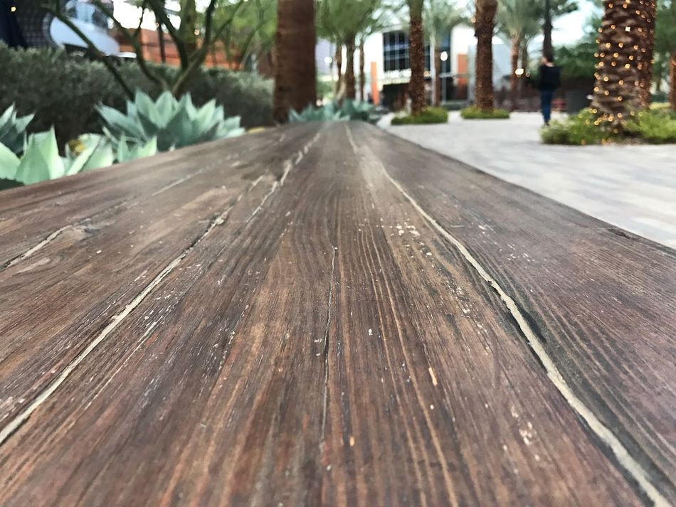 Bench Wood - Material No People Outdoors Day Nature Tree Close-up Las Vegas