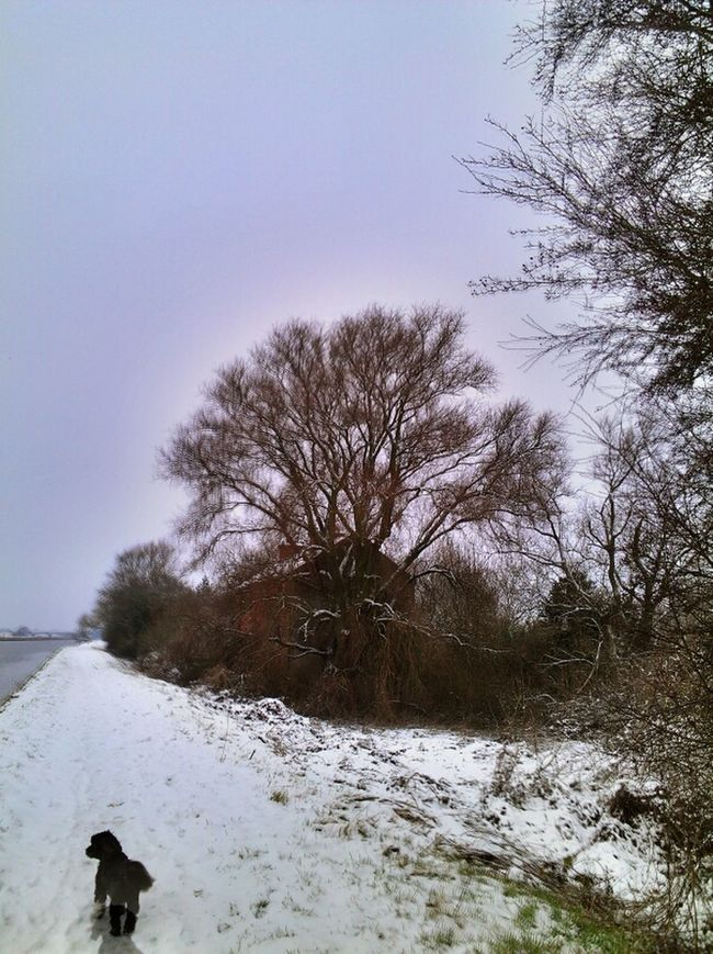 Nature Landscape Taking Photos TheMinimals (less Edit Juxt Photography)
