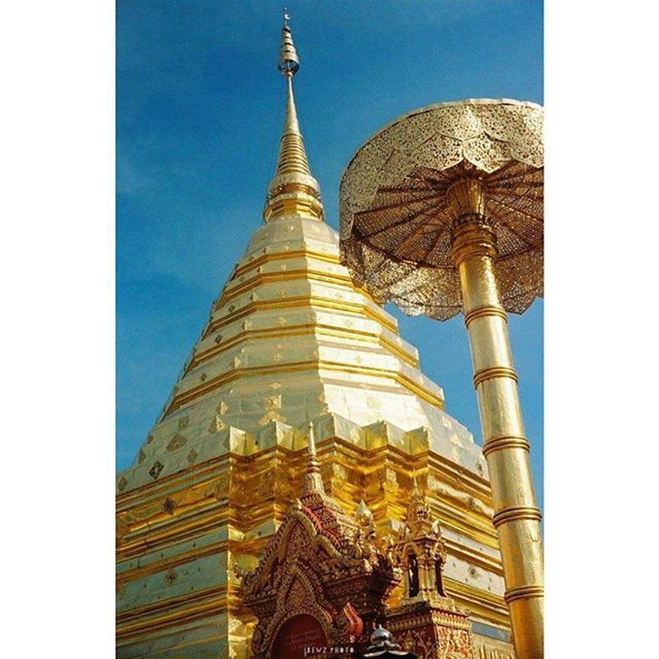 พระธาตุดอยสุเทพ Yashicaelectro35 Film Filmstagram Filmnotdead Istillshootfilm Insta_thailand Beautiful_thailand Doisuthep Chiangmai Phrathat Phrathatdoisuthep Wat Temple Buddha Thailand_allshots Thailand