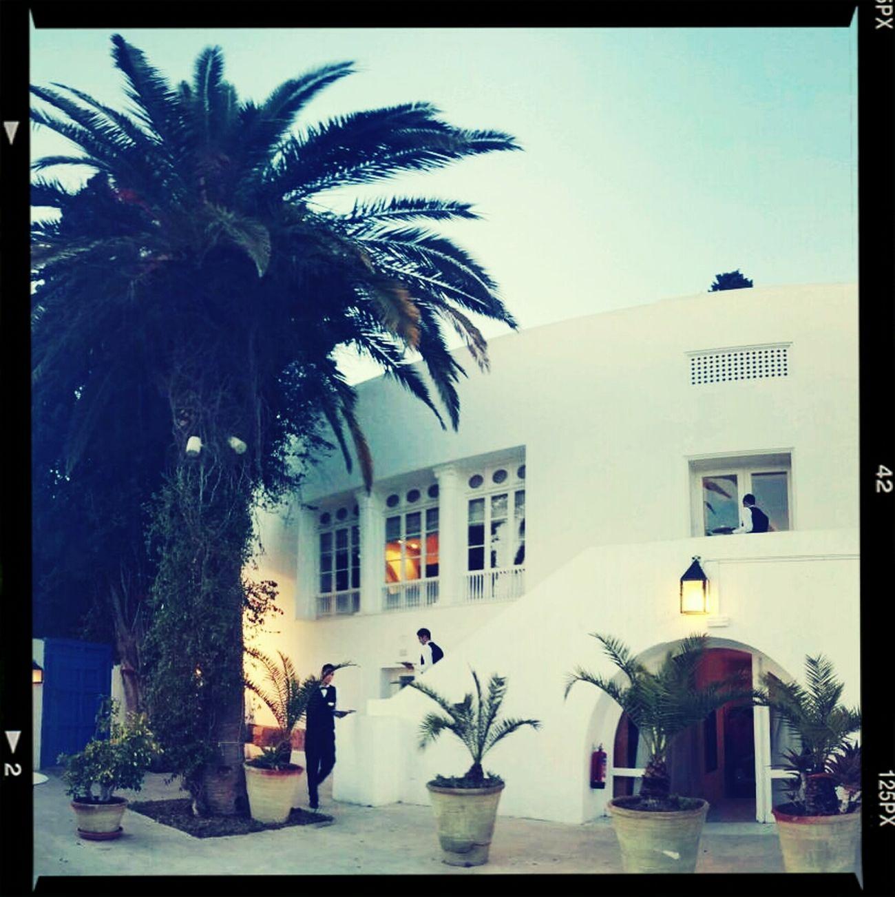ILoveMyJob Taking Photos Sidi Bou Said Tunisia