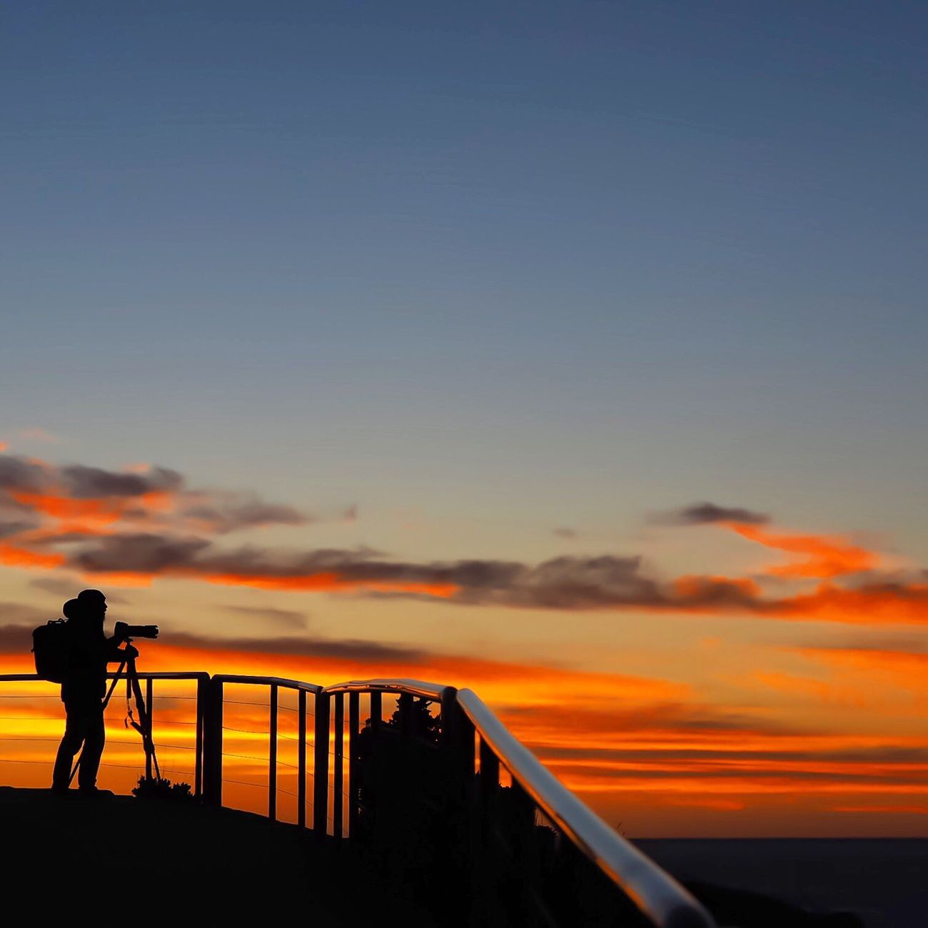 Sunrise up... Sydney Australia Sunrise_sunsets_aroundworld Newtalent Telling Stories Differently Thecolourofthesun Silhouette Photographer In The Shot People And Places