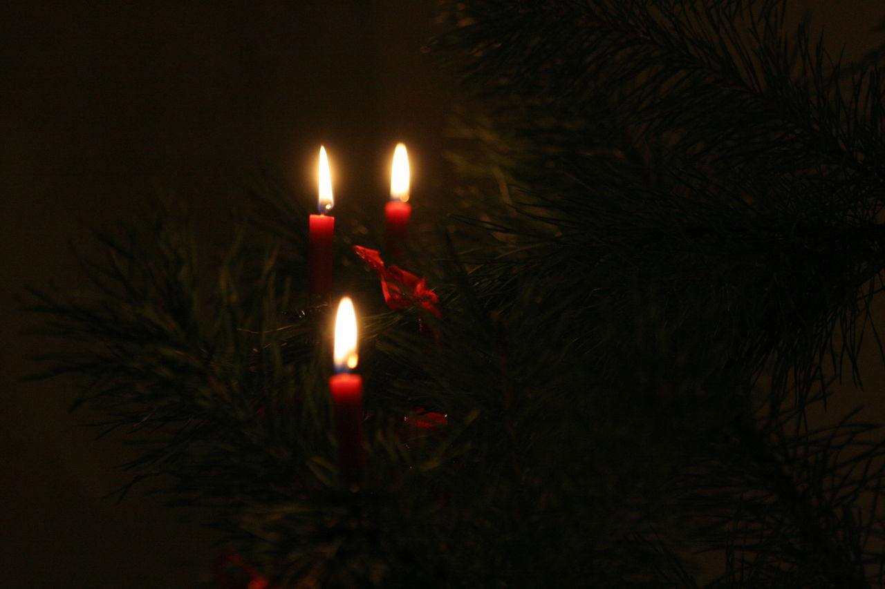 Advent Burning Candle Celebration Close-up Dark Flame Illuminated Indoors  Intimacy Lighting Equipment Night No People Three Candles Warmth