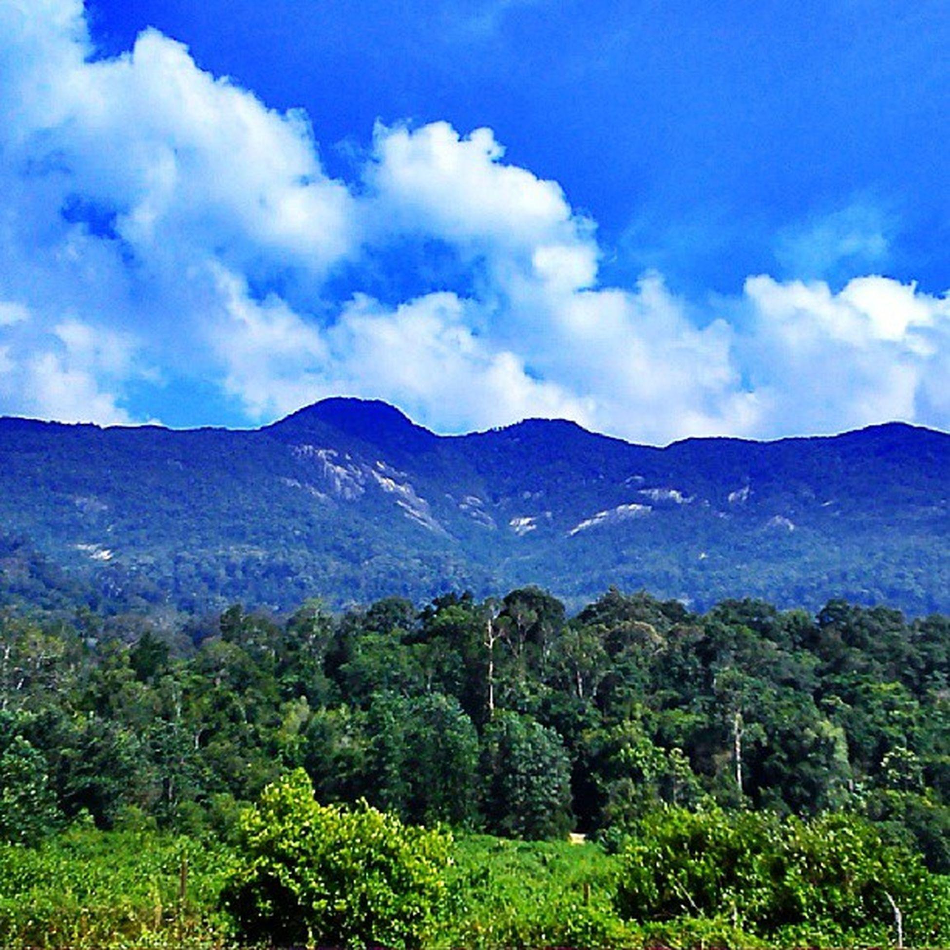 Weekend Mount Ledang Climbing extremesportswaterfallswimmingenjoylifestylenaturelover