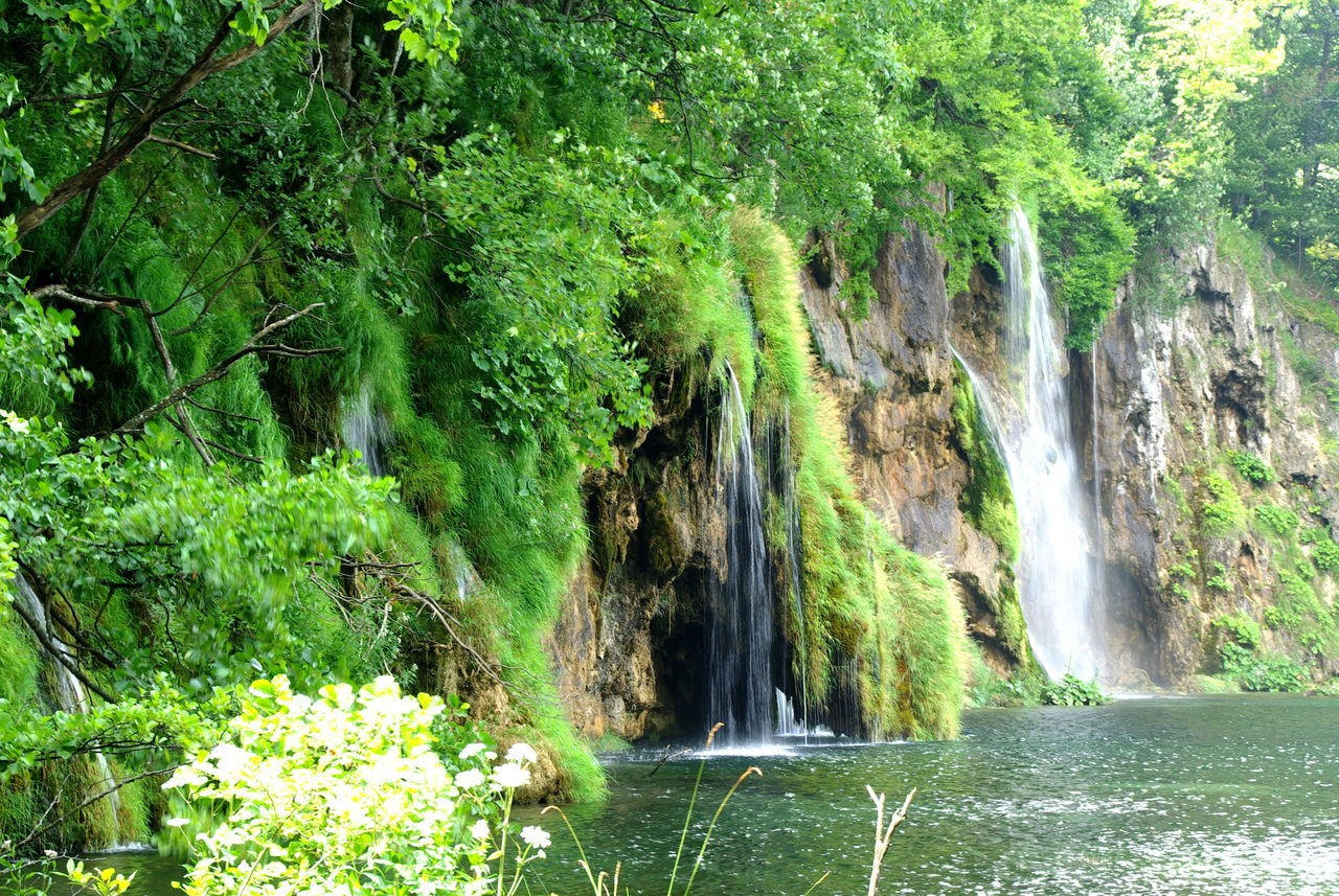 Plitvička jezera Beauty In Nature Blue Color Environmental Conservation Fast Water Green And Water Green And Waterfall Green Color Green Trees Idyllic Lake District Lakeshore Lakeside Lakeview Motion Motion Water Natural Park Nature Colors Plitvicka Jezera Rock Formation Silence Silence Of Nature Water Reflections Waterfall Waterfall_collection Willow Tree