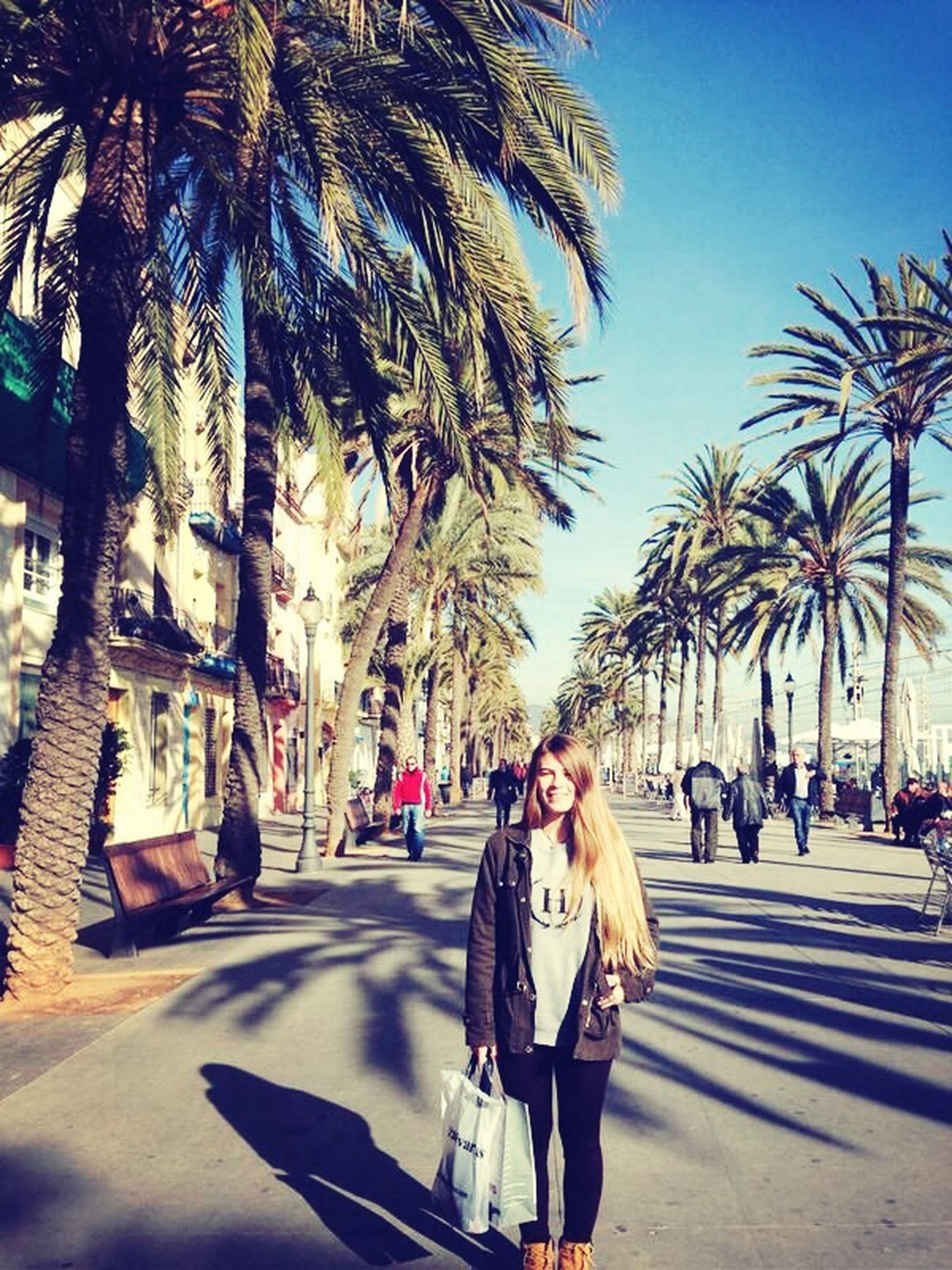 palm tree, tree, lifestyles, leisure activity, person, clear sky, men, street, walking, shadow, large group of people, sunlight, road, city life, tree trunk, city, day, building exterior, treelined