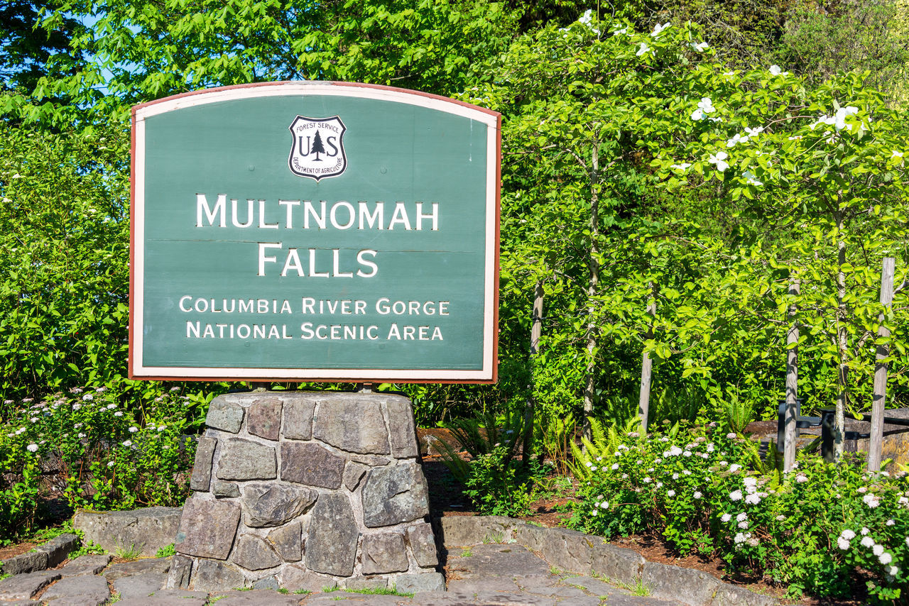 Sign to the entrance of Multnomah Falls in the Columbia River Gorge in Oregon Columbia River Gorge Communication Day Gorge Green Green Color Landscape Multnomah Falls  Nature Nature No People Northwest Oregon Outdoors Pacific Northwest  Text Tourism Travel Travel Destinations Tree USA