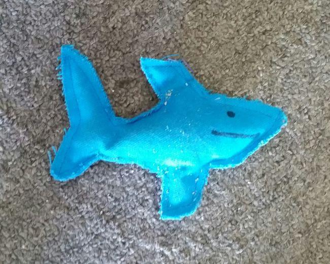 catnip toy Catnip Toy Catnip Cats Cats Of EyeEm Shark Toy Shark Happy Smile Shark Sharks