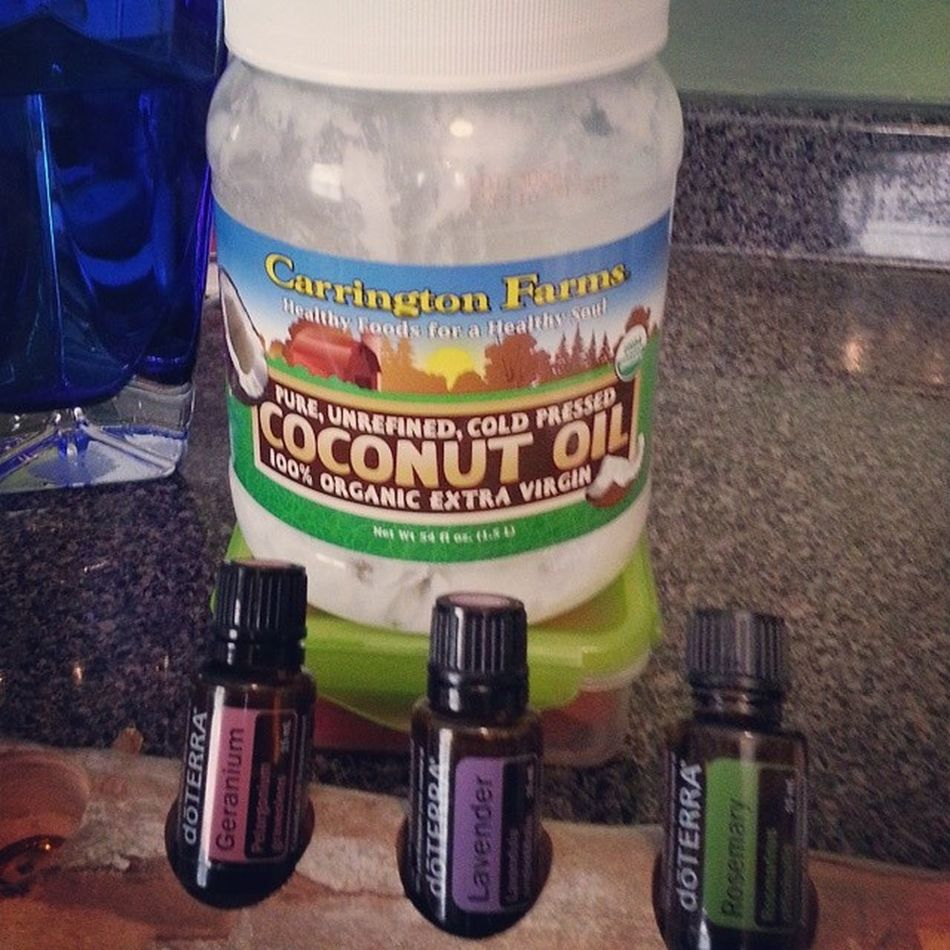 2 teaspoons organic CoconutOil 2 drops each DoTerraessentialoils Rosemary Geranium lavender has cut MY GREATDANE shedding in HALF!!! And made their coats so soft, shiny and healthy. Only doterra oils are edible! Must be CTPG! @summerberg04 @journey_of_the_giants @cloudyskieschloe @brucethegreatdane greatdanelover