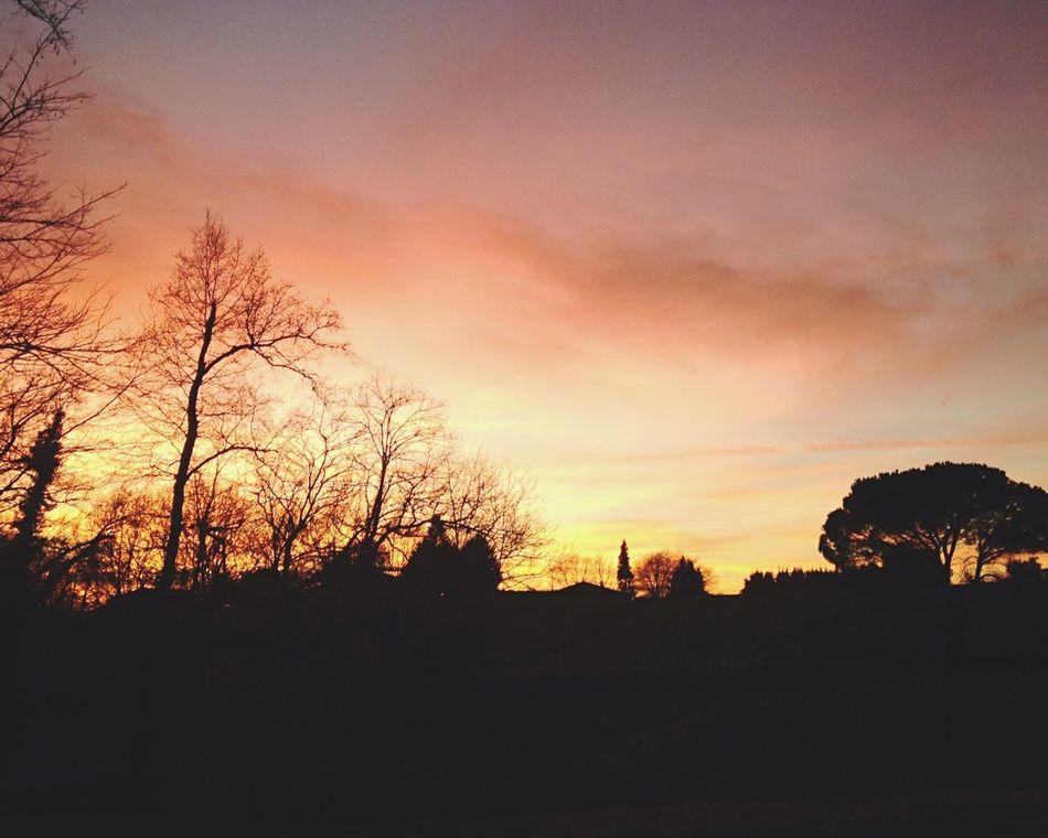 From My Doorstep Summer Views Enjoying Life Hanging Out EyeEm Best Shots Eye4photography  Nature Sunset Beautiful Colors