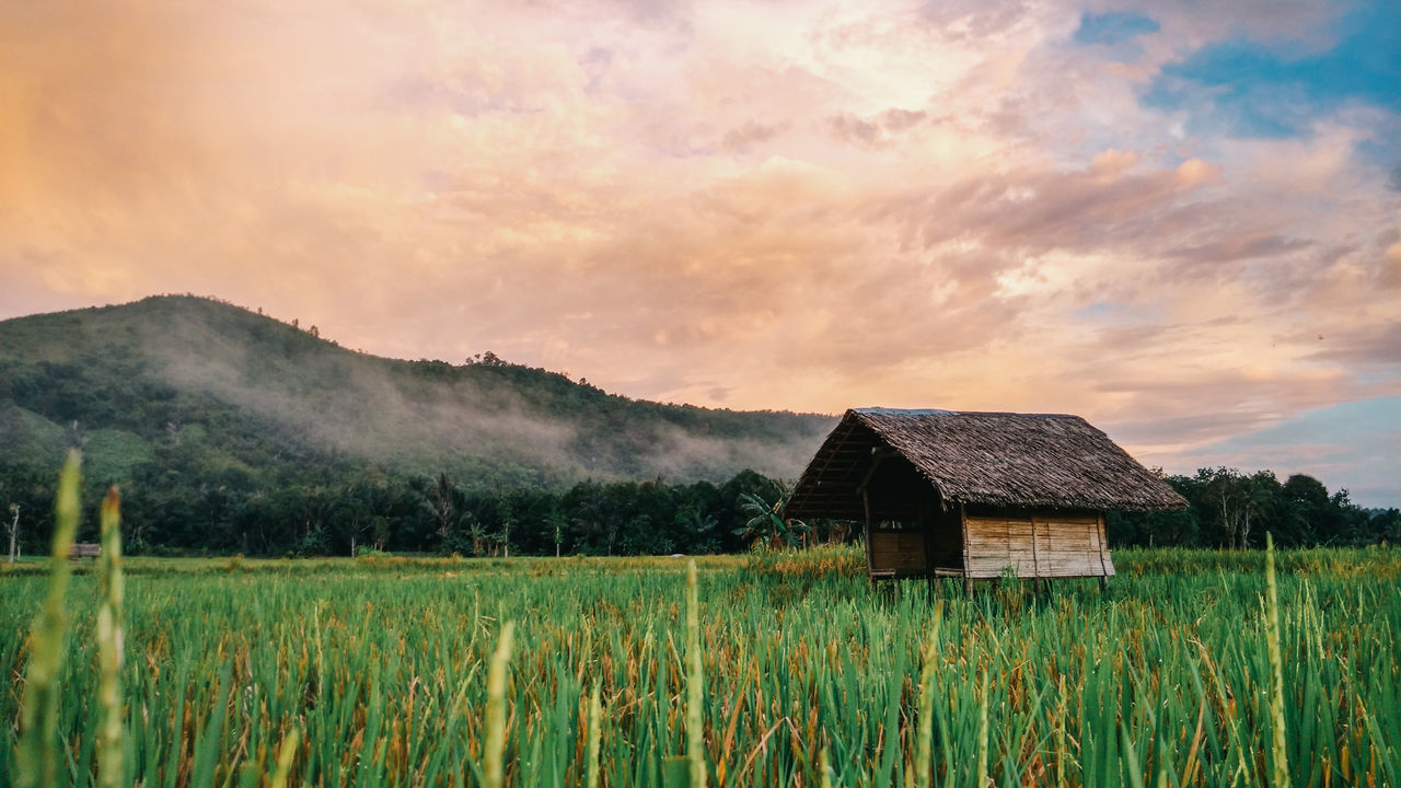 Orange clouds at dusk Agriculture Architecture Beauty In Nature Building Exterior Built Structure Cloud - Sky Cottage Dusk EyeEmNewHere Farm Full Length House Hut Landscape Mountain Nature No People Outdoors Rice Paddy Sky Tranquil Scene Tranquility Tree Paddy Field The Secret Spaces The Great Outdoors - 2017 EyeEm Awards