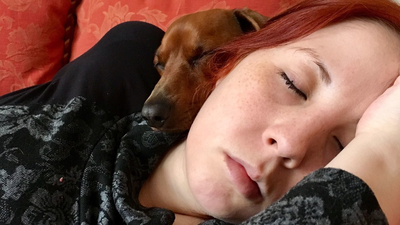 eyes closed, dog, pets, one animal, real people, one person, mammal, sleeping, domestic animals, close-up, relaxation, leisure activity, redhead, young adult, headshot, indoors, lying down, home interior, young women, bed, day, portrait, people