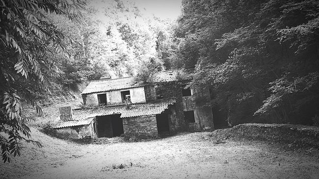 Hi! Taking Photos Dreamscape Bnwphotography Bnwportrait Blackandwhite Photography Black And White Collection  Landscape_Collection Landscape_photography Nature Landscape Black & White Welcome To My World in Blackandwhite Bnw_captures Abandoned Places Abandoned Buildings