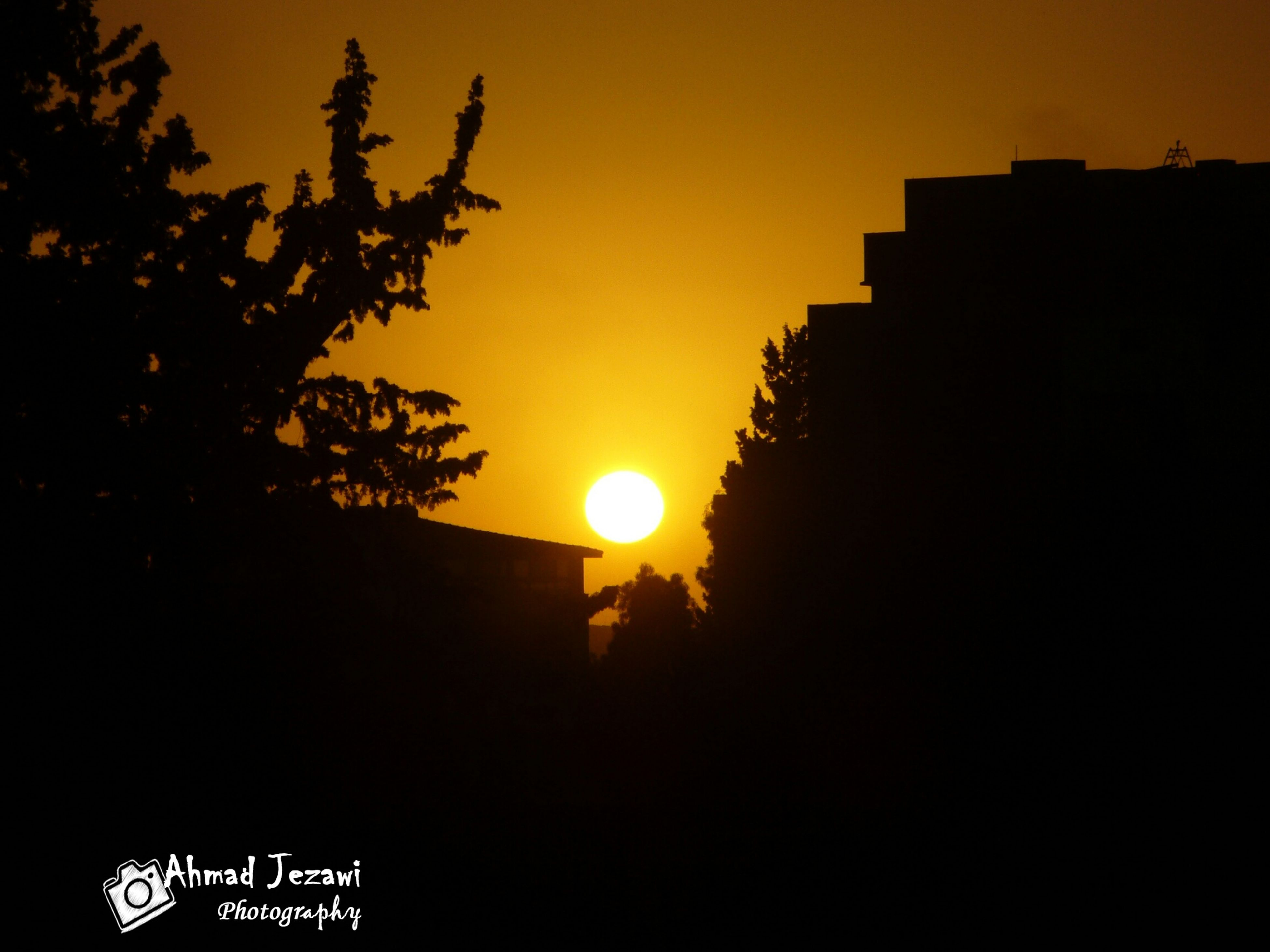sunset, silhouette, sun, tree, clear sky, orange color, copy space, sky, building exterior, built structure, beauty in nature, nature, scenics, tranquility, architecture, dark, outdoors, tranquil scene, branch, no people