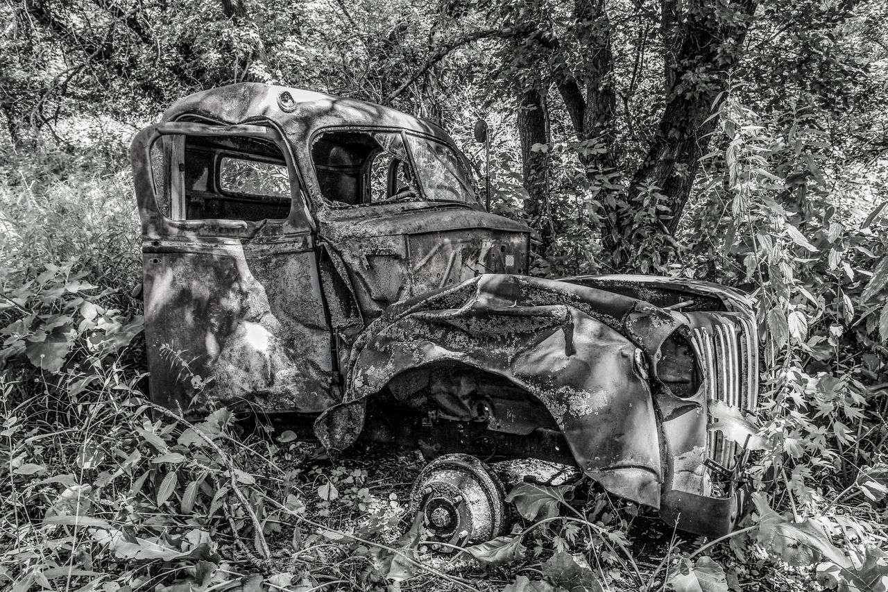Wrecked Abandoned Black & White Black And White Canon60d Canonphotography Damaged Dented EyeEm Gallery Old Summer Transportation Trees Truck Woods Wrecked