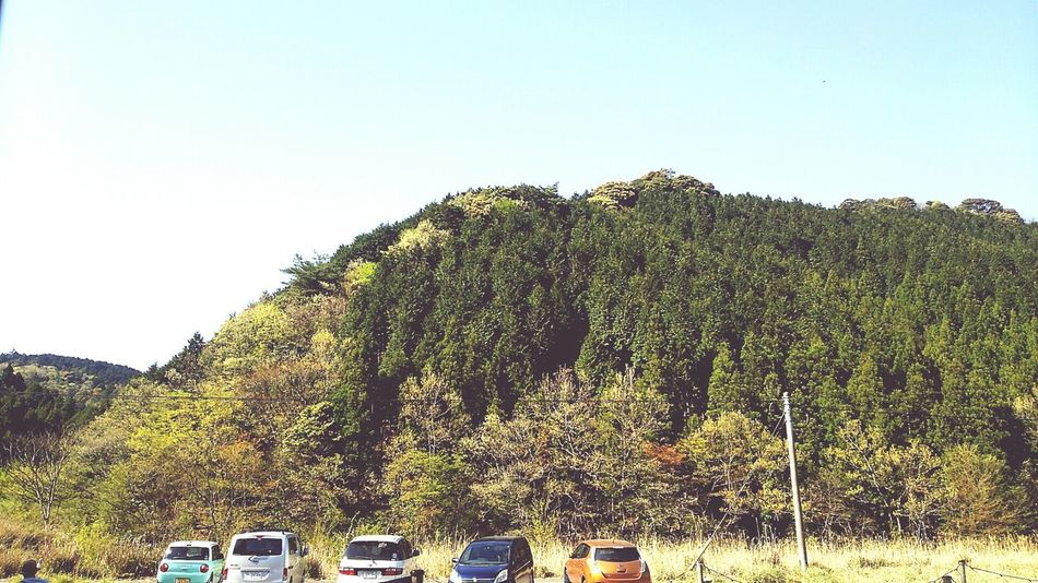 Tree Day Clear Sky No People Sky Green Color Outdoors Blue Growth Nature Beauty In Nature 俵山の納屋カフェからの景色♪