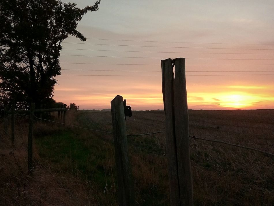 Sunset Post Barbed Wire Split Wood Fields And Sky Photography Themes Tree Romantic Sky Tourism Travel Destinations Nature Social Issues Human Eye Grass Outdoors Vacations Photographer Sky Day People