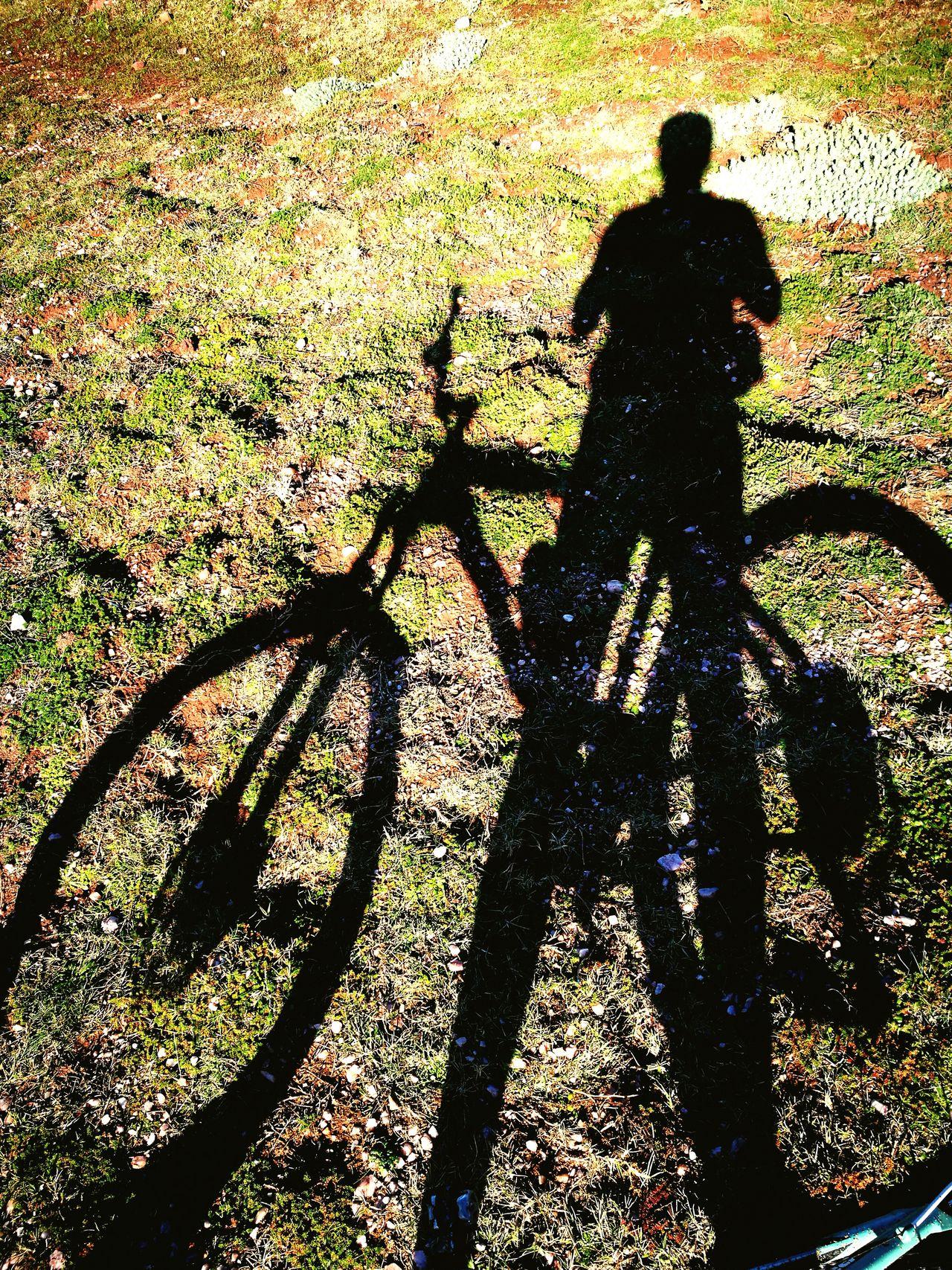 My Year My View Biketour Freedoom  Nature Makes Me Smile Ride My Bike Sightseeing Tour December Lights Sun Day ☀ Shadow Sea Rocks