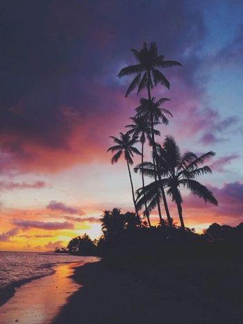 Sunset Sunset #sun #clouds #skylovers #sky #nature #beautifulinnature #naturalbeauty #photography #landscape Photography Palm Trees Beach Colors Night Fall Ocean Nature Clods And Sky