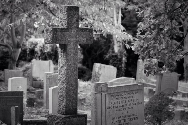 Black And Light Blackandwhite Black&white Black & White Cemetery Graveyard Photography Noir Et Blanc Monochrome Graveyard Beauty Blancoynegro Bw_collection Eye4photography