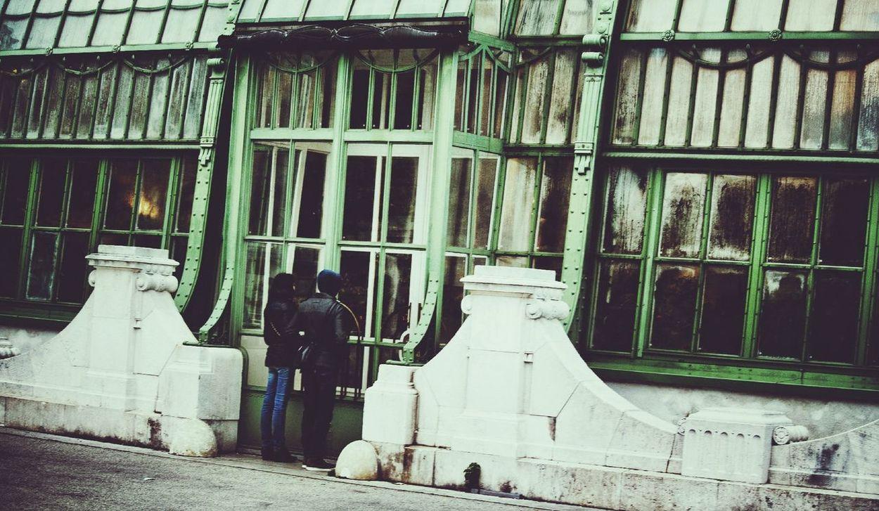 Windowshotwednesday Palmenhaus Scenery Shots Streets Of Vienna