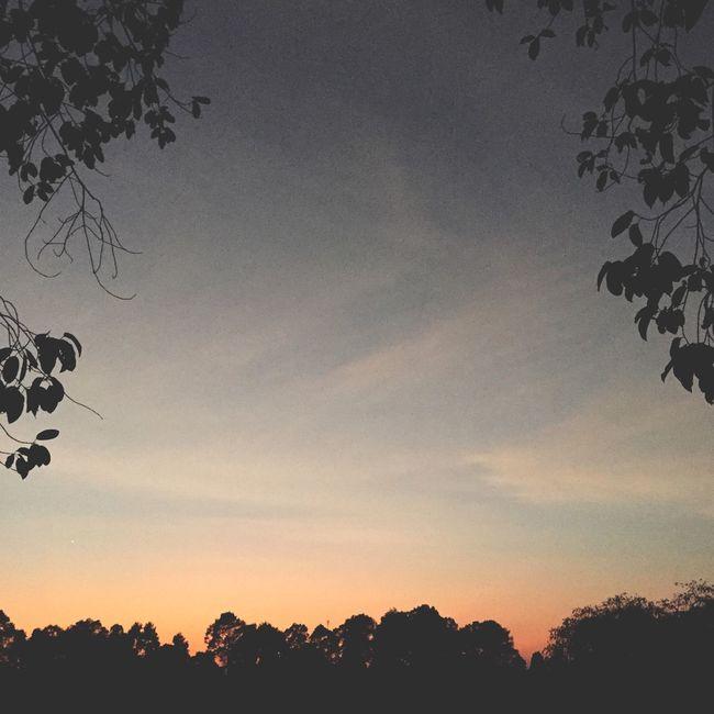 AMPt_community EyeEm Silhouette Sunset