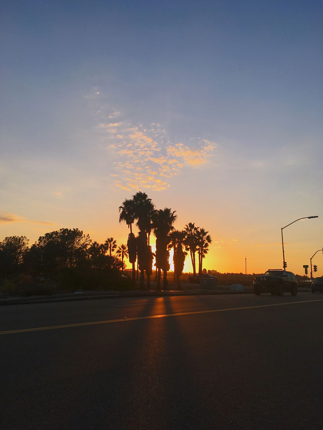 Sunset Tree Transportation Road Car Mode Of Transport Street Land Vehicle Sky Silhouette Nature No People Palm Tree Outdoors Beauty In Nature The Way Forward Scenics Day Taking Photos Hello World Check This Out Beach Vacations Open Edit