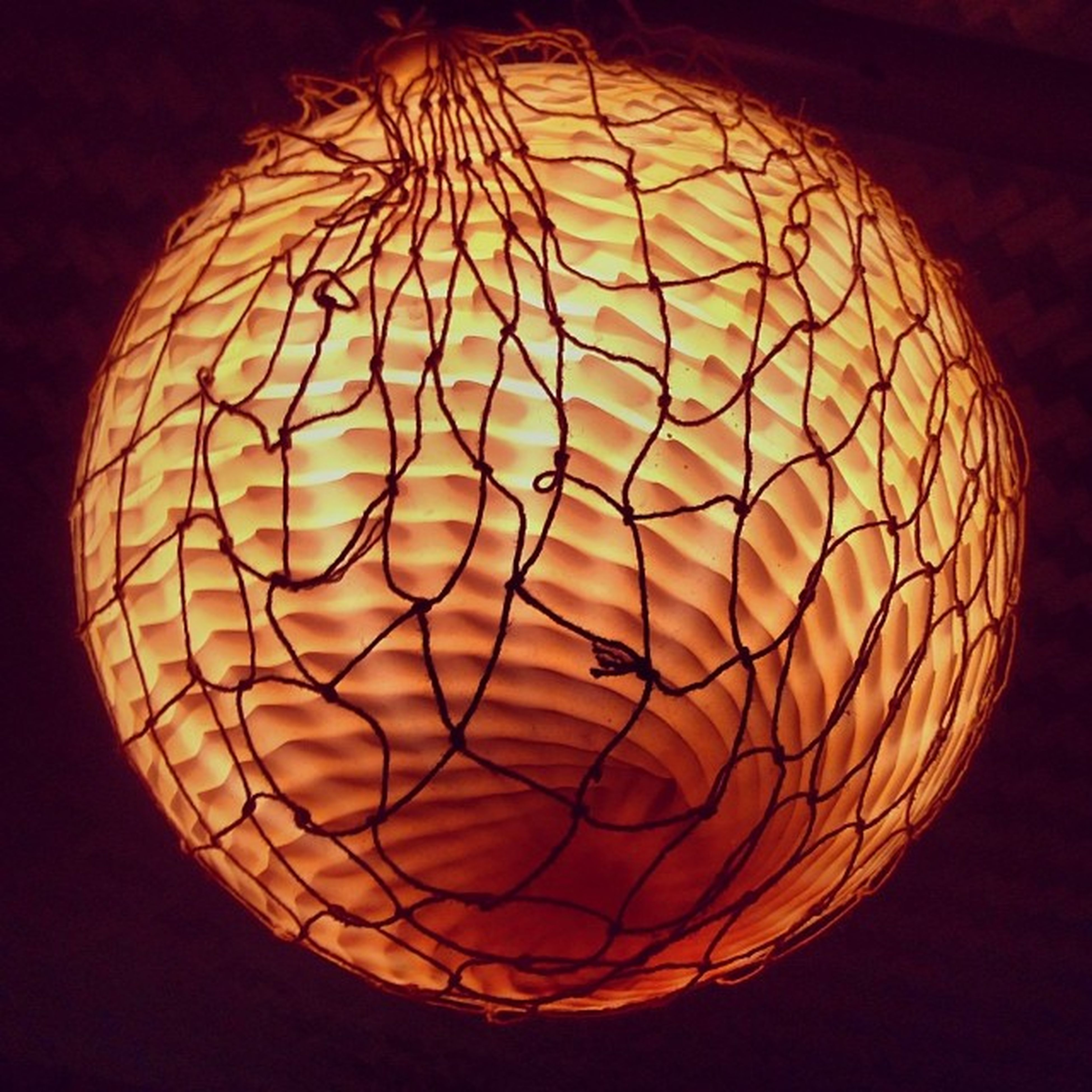 Lamp Augsburg Haifischbar