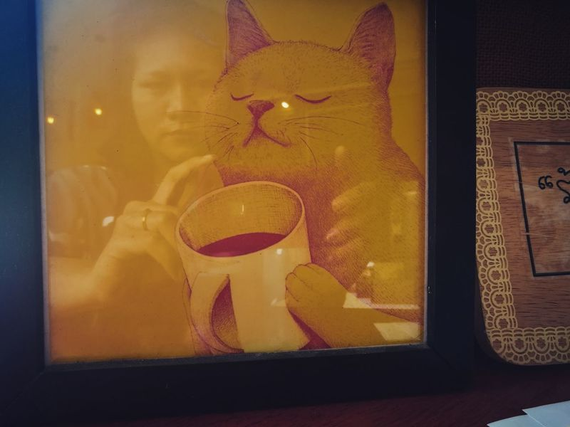 Cat coffee and me Cat Coffee Cup Coffee Close-up Myself Shadow Happy :) Relaxing Moments Yellow No People Day Bird