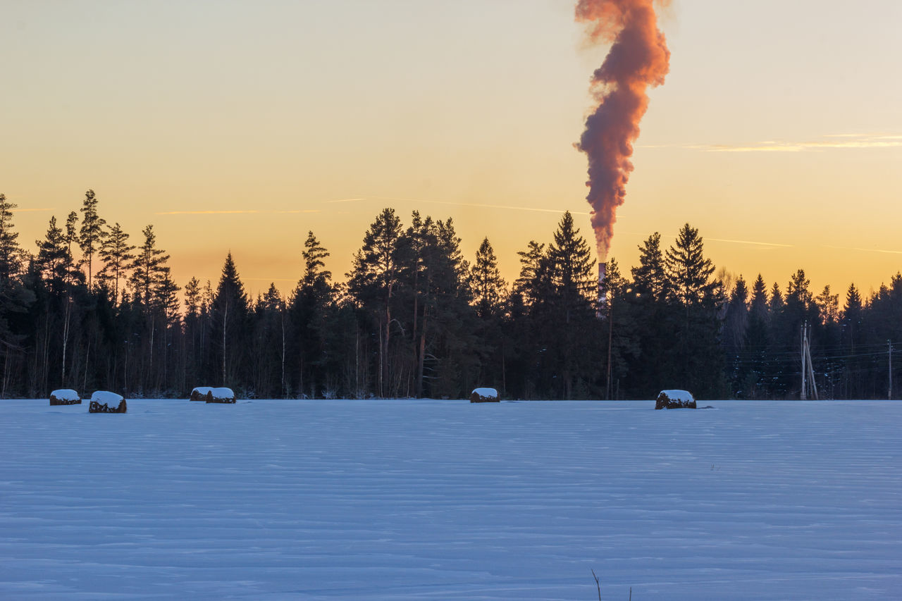 Winter. Field, hay, pipe plant, smoke. Beauty In Nature Cold Temperature Forest Hay Landscape Nature No People Outdoors Pipe Scenics Sky Smoke Snow Sunset Tree Winter