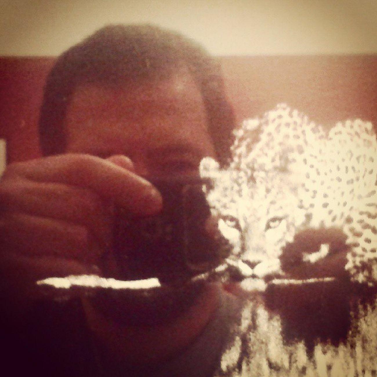 """Um dos """"gatinhos"""" na exposição Genesis do Sebastião Salgado. Photography MemyselfandI Selfportrait SebastiaoSalgado Lisboa Lisbon Igersportugal Ig_portugal Igerslisboa Ig_lisboa Cordoarianacional Exibition Jornalinsta A_meu_ver Photographer Fromwhereistand Instaphoto Instagood Art Artgallery Peloscaminhosdeportugal Lovelyplanet Patrimonio Portugaldenorteasul Aroundtheworld culture igmasters"""