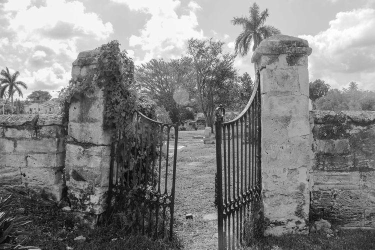 Bahamas Black And White Blackandwhite Caribbean Caribbean Life Cemetery Gate Historical Island Life Nassau Nassau, Bahamas Old Bahamas The Bahamas