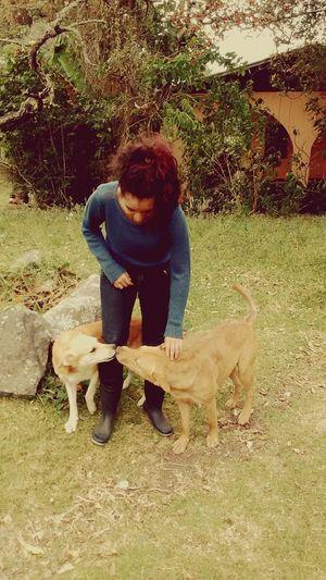 Holiday POV Lovedogs Farm Dogs Animal Photography Animalslover Animallovers EyeEm Animal Lover Doggies Farm Life