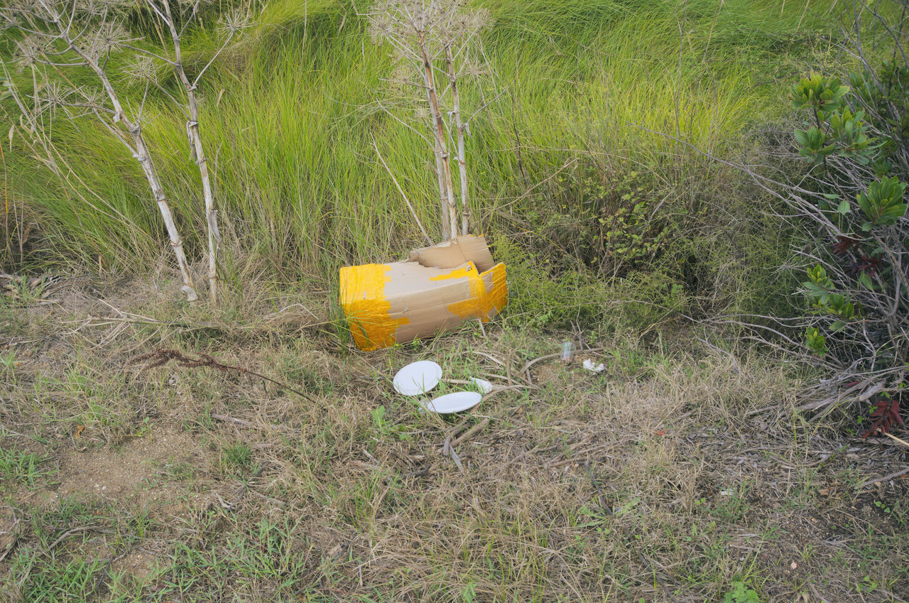 rubbish in field Day Discarded Dumping Environment Field Field Garbage Grass Grass Litter Meadow Nature No People Outdoors Plants Pollution Refuse Rubbish Trash Waste