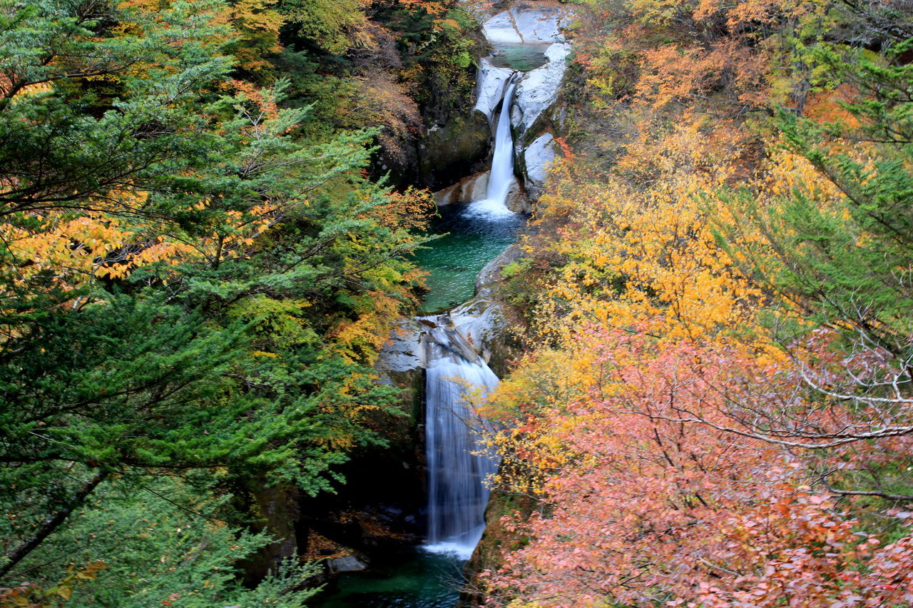Autumn Autumn Colors Beautiful Fall Mountain Nature Ojiro Water Waterfall Yamanashi ハイキング 山梨 滝 神蛇滝 紅葉 自然