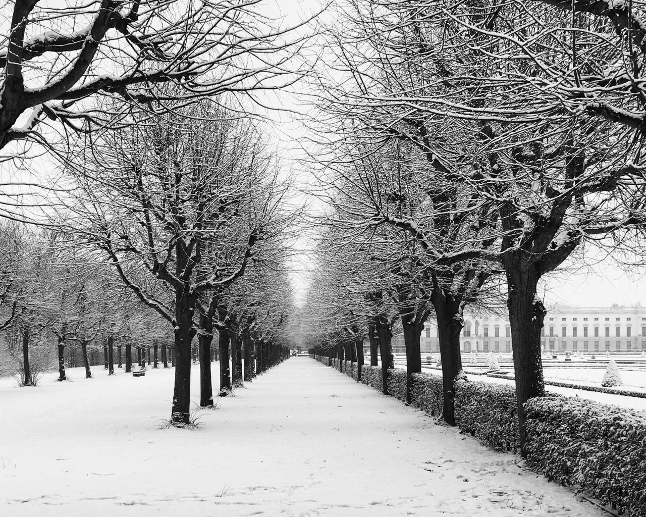 winter Winter Wonderland Wintertime Winter Trees Park Schloss Charlottenburg