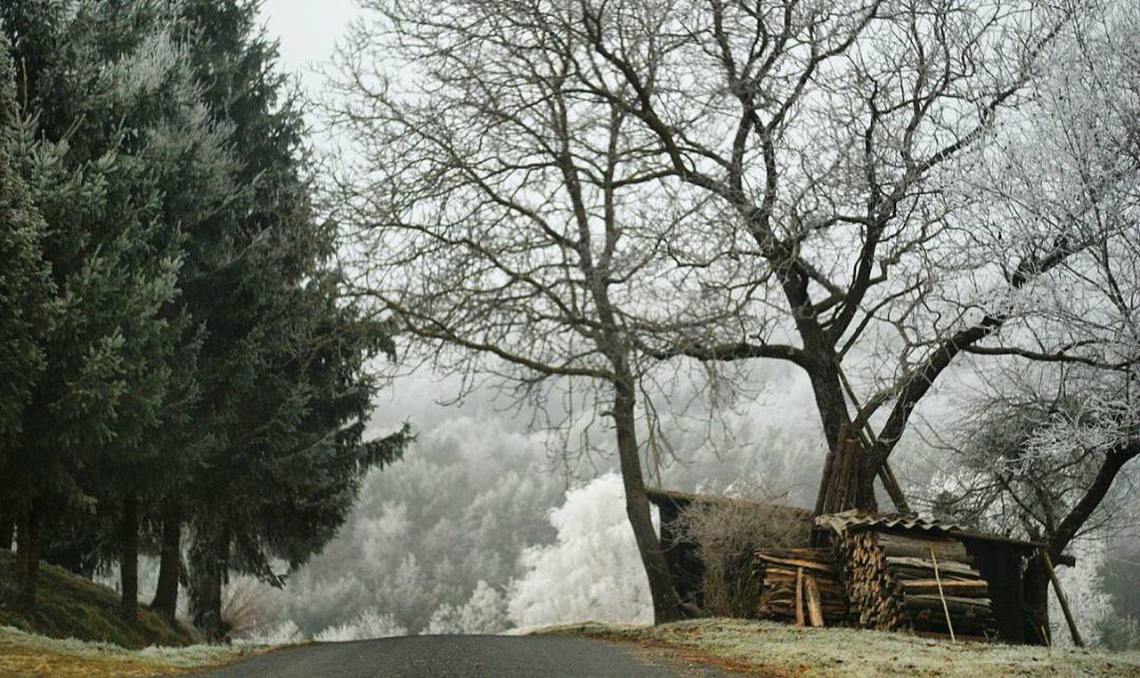 Wanderlust Hungary Orseg Winterime Winteriscoming EyEmNewHere