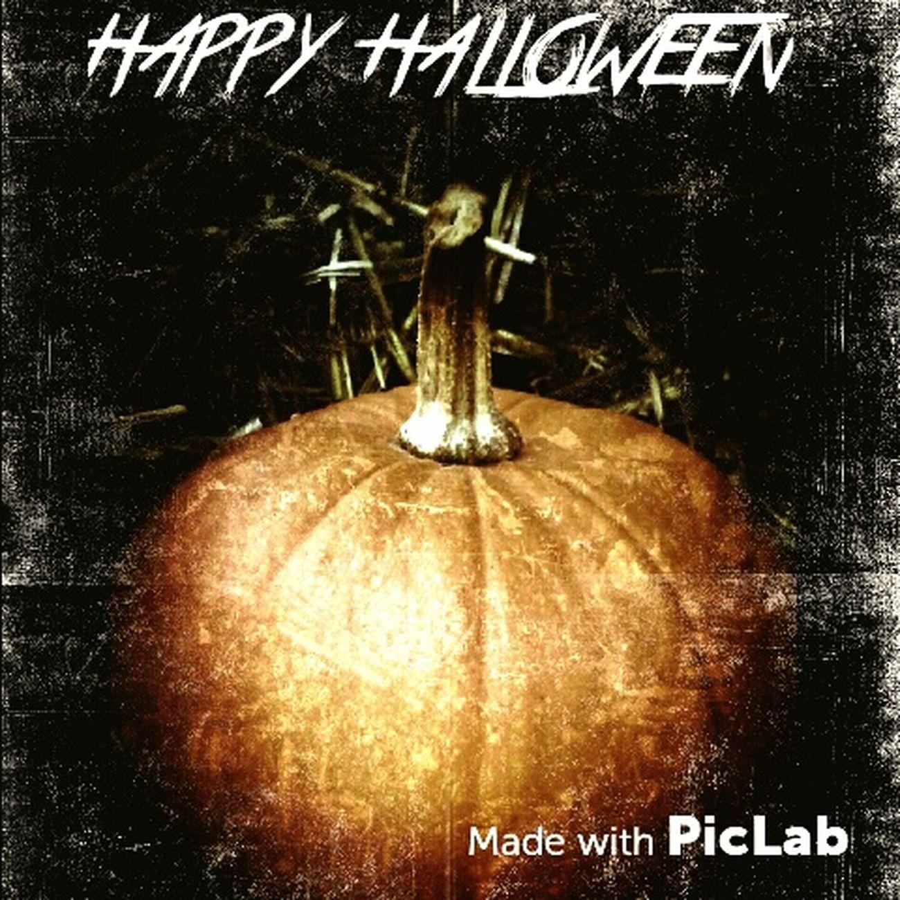 Halloween Pumpkins Fall Allhallowseve Brandonstafford