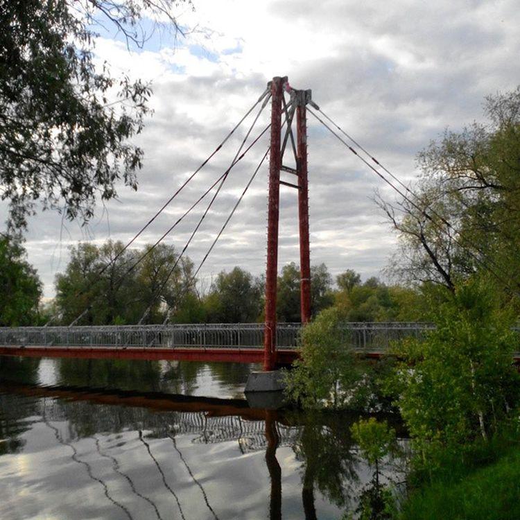 кчзо омск сибирскоелето сибирь река Иртыш полноводный Разлив мост Omsk Siberia Siberiansummer Brige Irtysh Flood River Highwater Instaomsk15