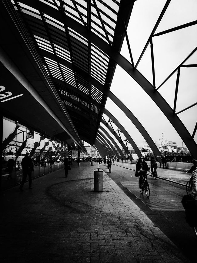 Architecture Built Structure City Bicycle Transportation Ceiling Travel Destinations Walking Travel Full Length Modern Cycling City Life Day Footbridge Sky The Way Forward Architectural Feature Footpath