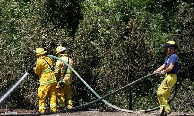 Firefighters Brush Fire Extinguishing Fires Hose