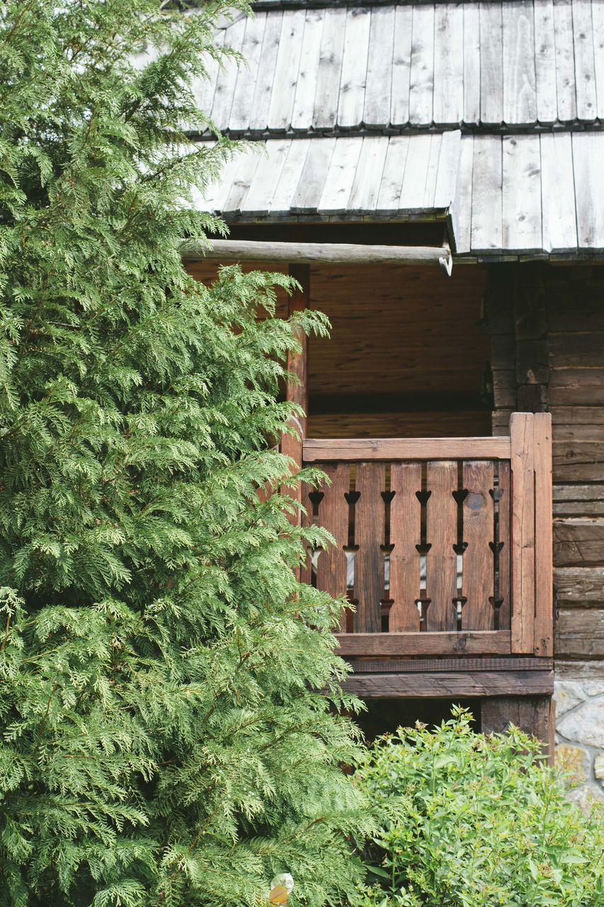 built structure, green color, day, architecture, no people, plant, wood - material, building exterior, tree, house, outdoors, growth, roof, nature