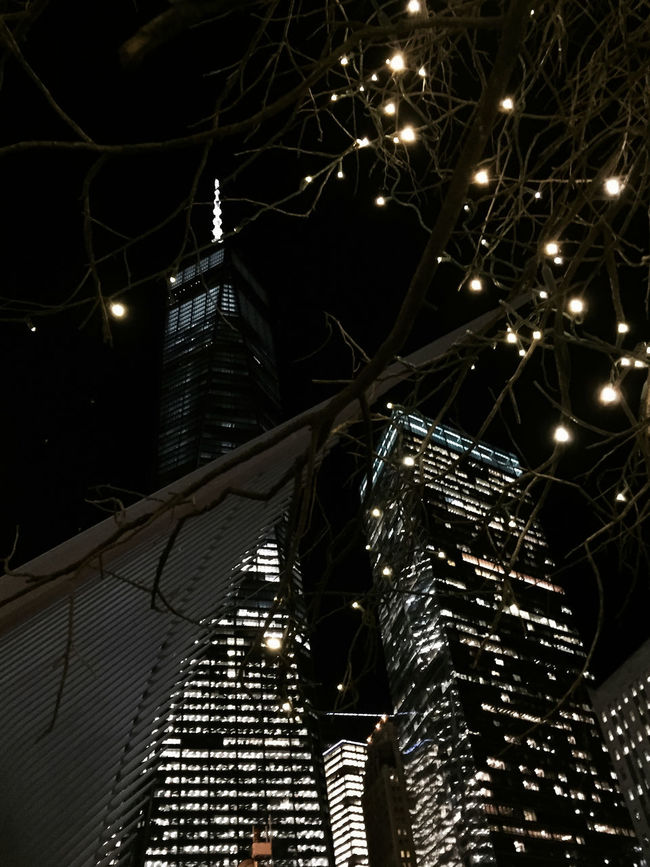 Freedom Tower Manhattan NYC Winter 2016 Timyoungiphoneography